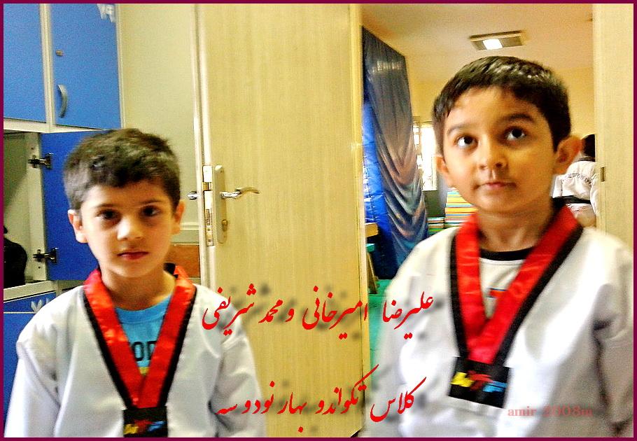 علیرضا امیرخانی  و محمد شریفی