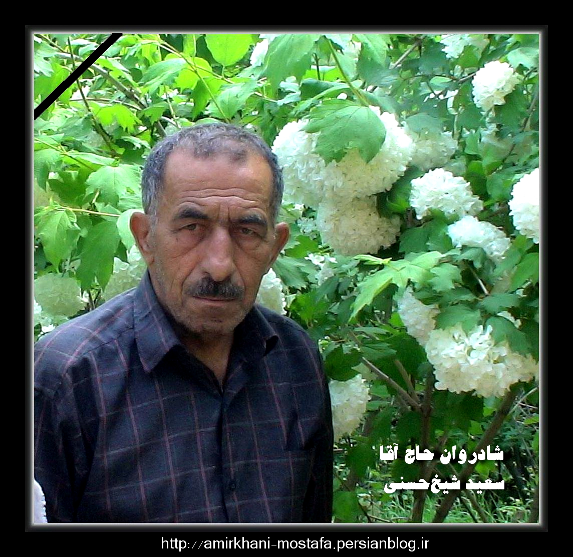 تکیه ناوه ، طالقان ، مرحوم حاج سعید شیخ حسنی